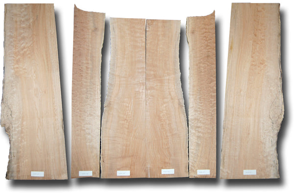 Big Leaf Maple Acoustic Guitar Set MSAMB-1565