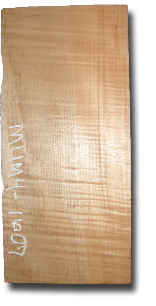 Big Leaf Maple Ukulele/Small Instrument Billet MUM4-1607
