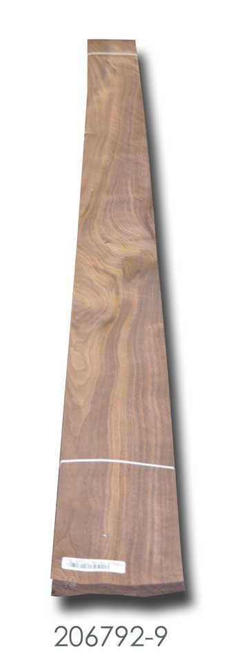 Oregon Black Walnut Veneer 206792-9