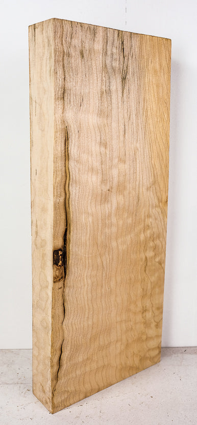 Big Leaf Maple Board B3454