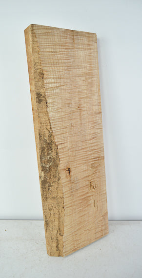 Big Leaf Maple Board B3528