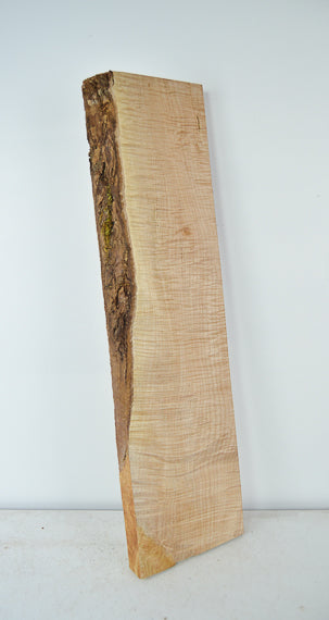 Big Leaf Maple Board B3533