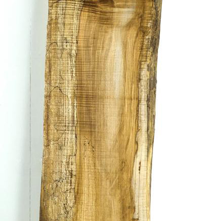 Big Leaf Maple Board B3666