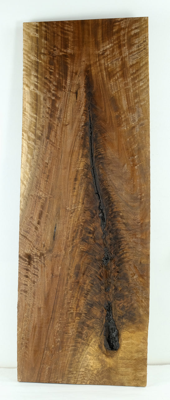 Oregon Black Walnut Board B3727