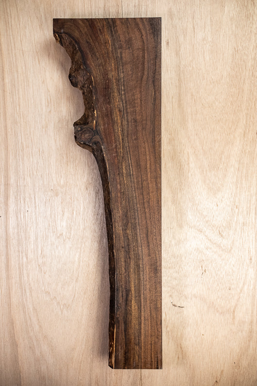 Oregon Black Walnut Board B4575