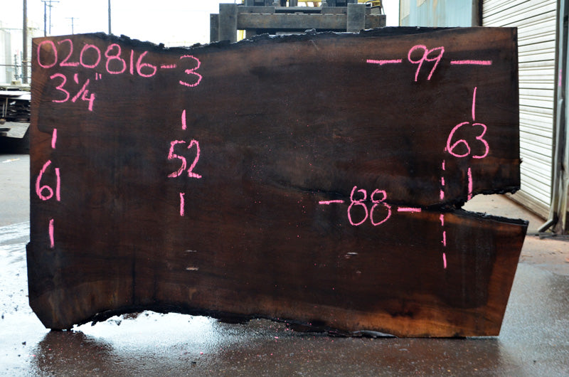Oregon Black Walnut Slab 020816-03