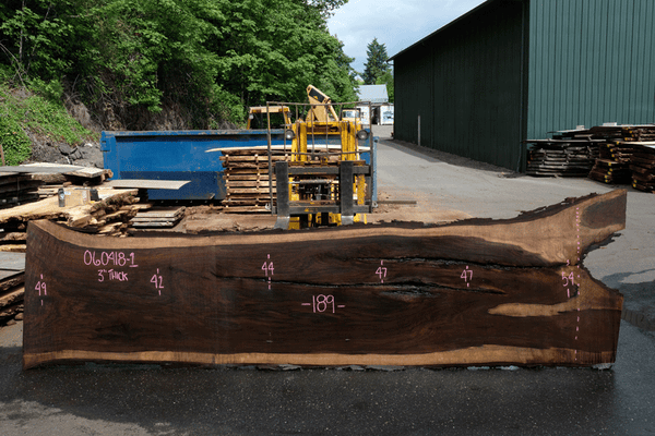 Oregon Black Walnut 060418-01