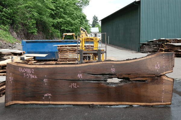 Oregon Black Walnut 060418-02