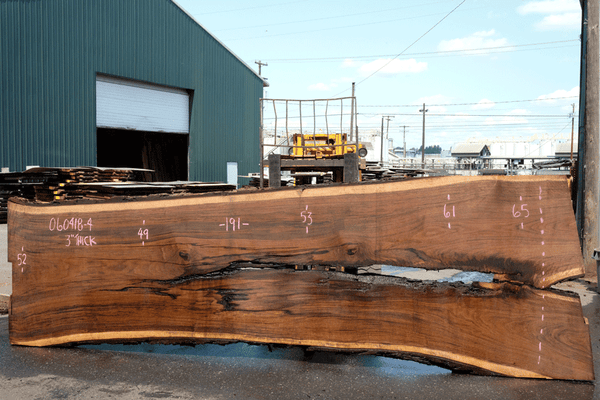 Oregon Black Walnut 060418-04
