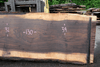 Oregon Black Walnut 061118-01