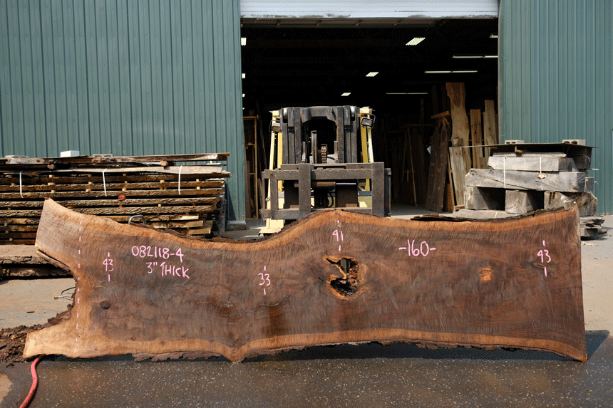 Oregon Black Walnut 082118-04