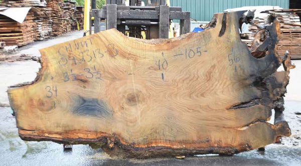 Chestnut Slab 092213-03