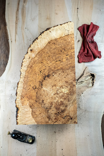 Big Leaf Maple Burl MB-177