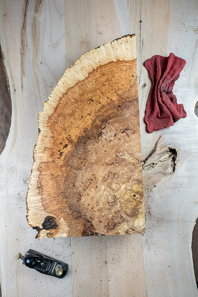 Big Leaf Maple Burl MB-179