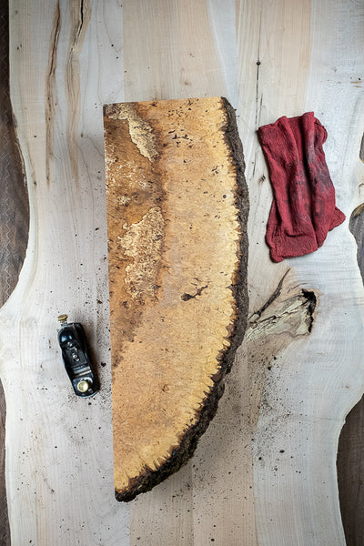 Big Leaf Maple Burl MB-189