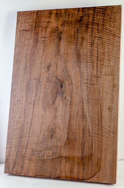 Oregon Black Walnut Electric Guitar Billet MGEW4-3116