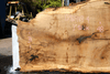 Oregon White Oak Slab 091918-04