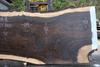 Oregon Black Walnut 100318-08
