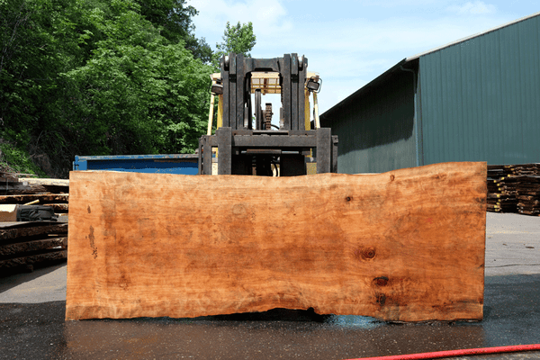 Redwood Slab 053018-02