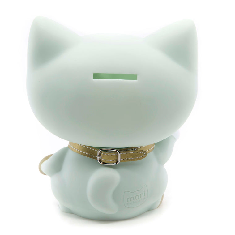 Cat 28 - Money Box