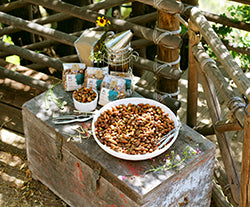 Sprouted nuts in our delicious sprouted trail mix snacks