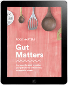 Food Matters Gut Matters E-Book