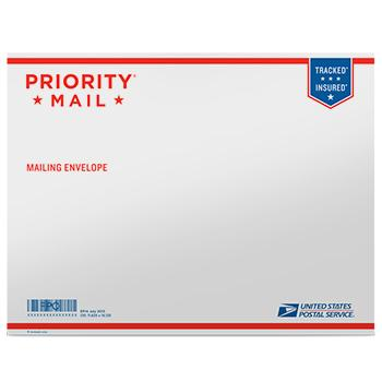 "Priority Mail Tyvek Envelope 15 1/8"" x 11 5/8"", 10/pack"