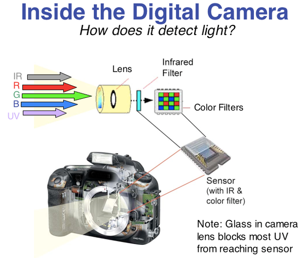 Inside a digital camera for infrared photography