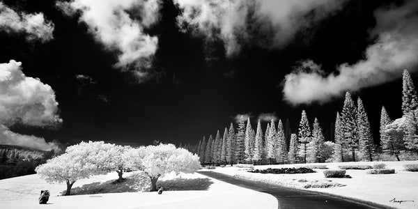 Cokin Black and White Infrared