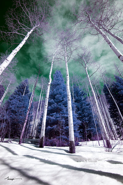 Cokin Infrared filter photography