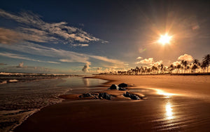 Sunset in Costa do Sauipe, Brazil