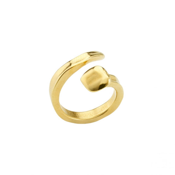 B12 Ring (ANI0456ORO)