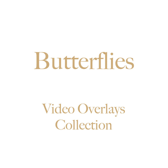Butterflies Video Overlays Collection  •  No Tutorials  •  NEW