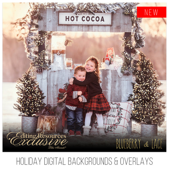 Holiday Digital Backgrounds & Overlays