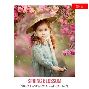 Spring Blossom Video Overlays Collection  •  No Tutorials