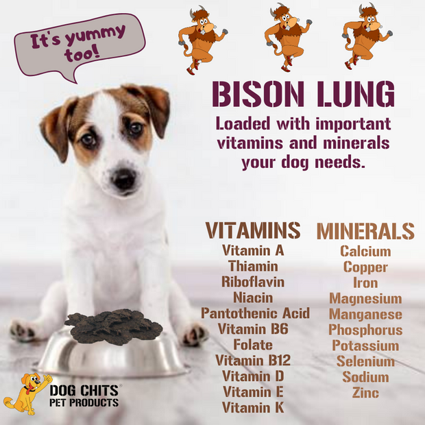 Bison Lung Fillets for Dogs - Dog and Puppy Chews, Huge Bag, Made in USA, All-Natural Treats, Crispy not Crumbly, Large and Small Dogs, Flavor Dogs Love