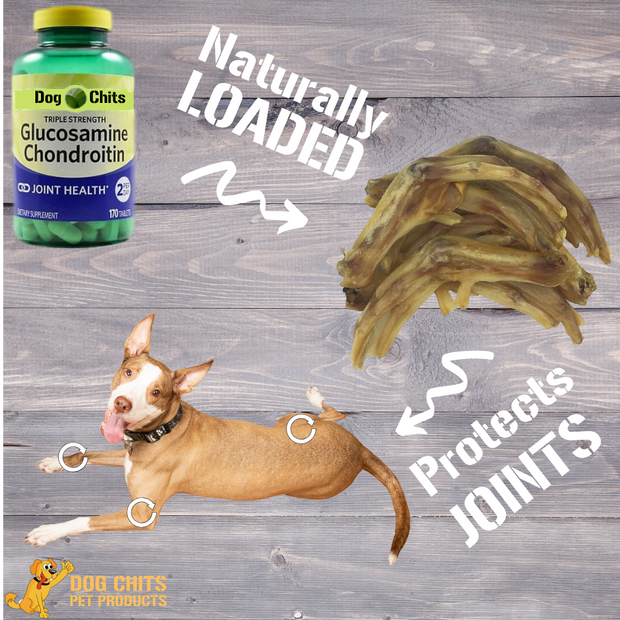 Duck Feet for Dogs - Dog and Puppy Chews | Nails Removed | Made in USA | All-Natural Treats | Large and Small Dogs | Nothing Added | Dehydrated | 18 Pack