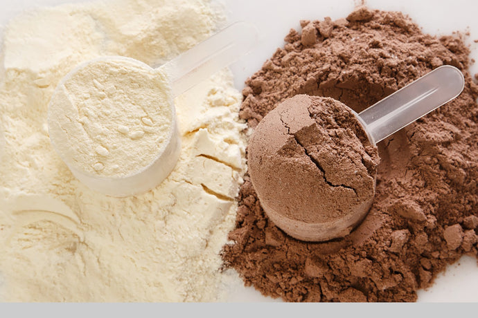 The 7 most Important Tips To know About Vegan Plant Protein Powders