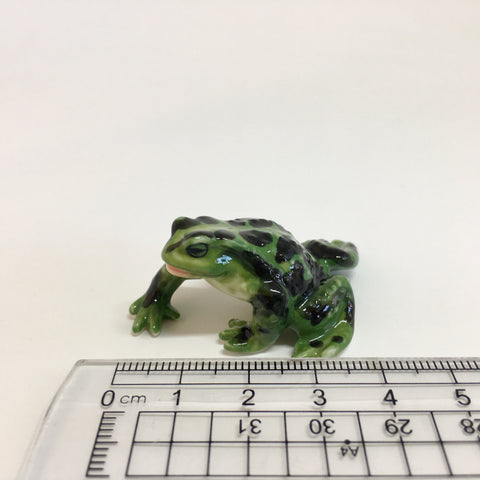 Large Miniature Ceramic Frog