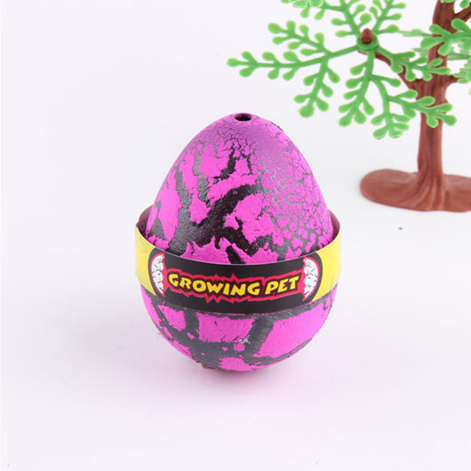 hatching dinosaur egg toy
