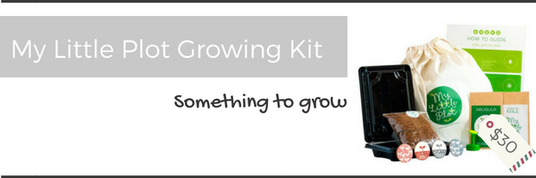 toddler christmas gift idea grow kit