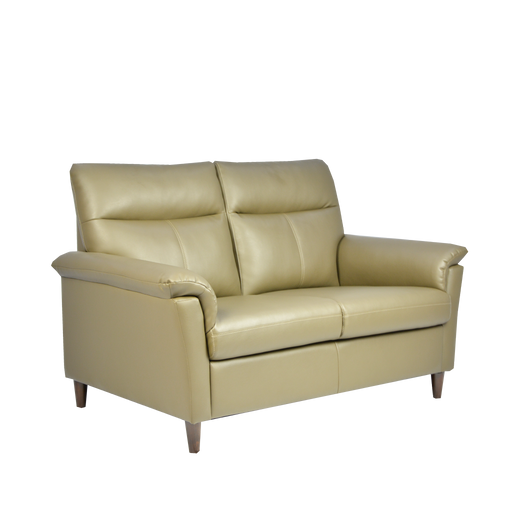 Doma 2 Seater Sofa, Simulated Leather - Novena Furniture Singapore