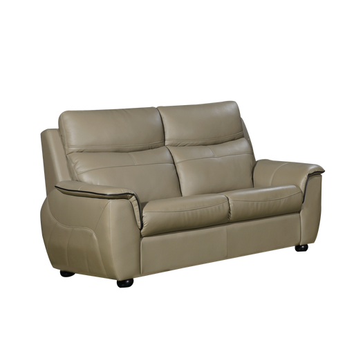 Lucana 2 Seater Sofa, Half Leather - Novena Furniture Singapore