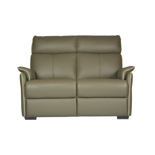 Silas 2 Seater Sofa, Half Leather