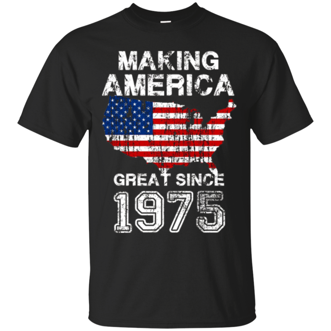 42nd Birthday Gift Shirt for Conservative Man or Woman