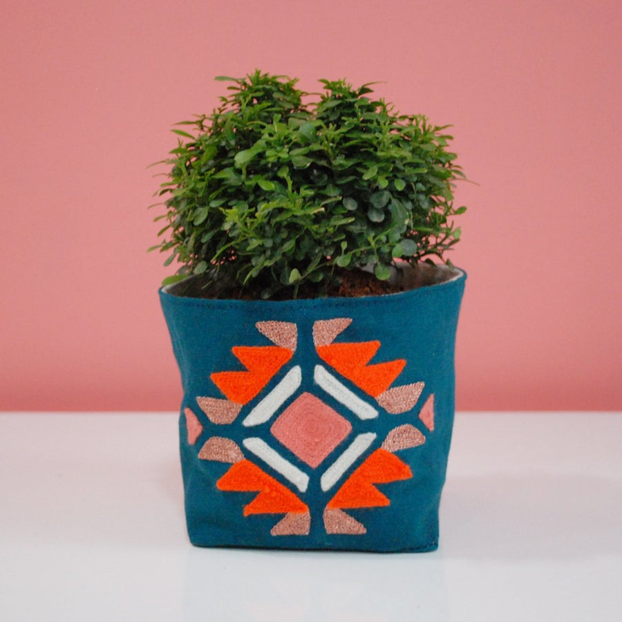 cute plants, plants, plant covers, gifts, green gifts, housewarming, gifts for all