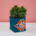 PLANT AND PLANT COVER WITH QUIRKY EMBROIDERY