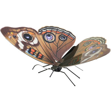 Metal Earth - Buckeye Butterfly 3D Laser Cut Model