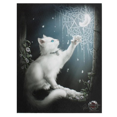 Snow Kitten Large Canvas by Linda M Jones