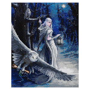 Midnight Messenger Crystal Art Kit by Anne Stokes